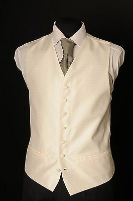 W - 1092.mens/boys Simple Ivory Solid Wedding Waistcoat/ Dress / Formal