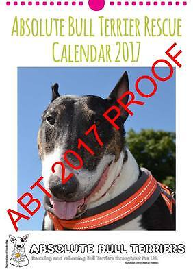 Absolute Bull Terriers Calendar 2017 a must for English Bull Terrier Enthusiast