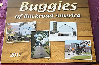amish 2017 horse/buggy calender