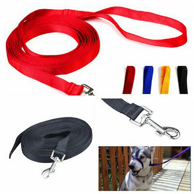 Dog Pet Training Lunge Obedience Lead Leash Webbing 100/50/30/20 FT New S