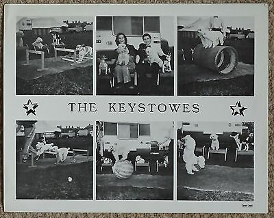 The Keystowes Publicity Flyer
