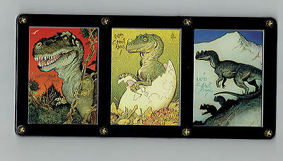 William Stout Signed Dinosaur Cards In A 3 Card Screwdown For Display