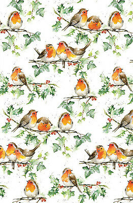 Little Red Robins Xmas Gift Wrap Pack 6 Sheets 6 Tags, Christmas Wrapping Paper