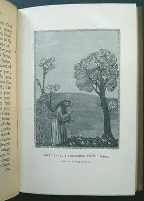 1898 Flowers of St. Francis 19th century Old Script Abby Alger ENGRAVINGS Libris