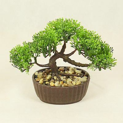 Bonsai Tree in Oval Pot, Artificial Plant Decoration for Office and Home 14 cm