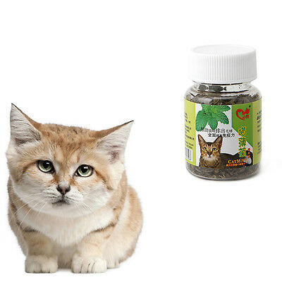 Cute 2g Fresh Organic Dried Catnip Nepeta cataria Leaf Flower Herb oz Bulk