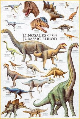 Dinosaurs - Jurassic Period Poster 61 x 91cm Wall Decor Home Bedroom LivingRoom