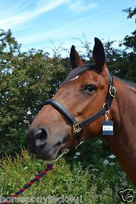 Padded Leather Headcollar,brown Or Black, Pony Cob Or Full Sizes