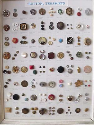 Fabulous Framed & Mounted Collection Antique & Vintage Buttons