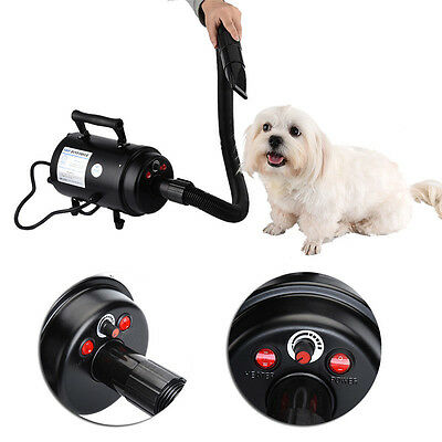 2800W Pet Cat Dog Pro Grooming Force Hair Dryer Hairdryer Blower Heater Blaster