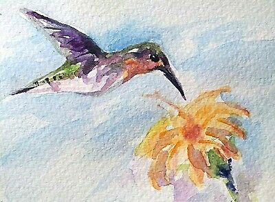 original watercolor painting ACEO humming bird on flower wildlife nature forest