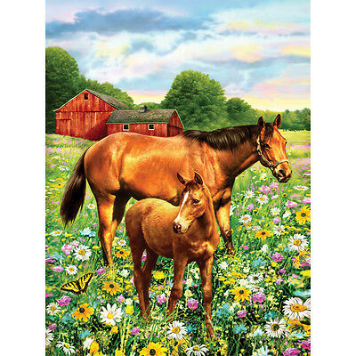 "Junior Small Paint By Number Kit 8.75""X11.75"" Horse In Field PJS-81"
