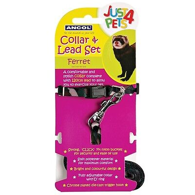 Ancol Ferret Adjustable Collar and Lead Set - Comfortable & Ideal For Exercising
