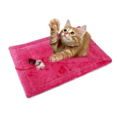 "16.5x12.6 ""Cat Mat Scratching Board Pad formation Scratcher Toy couleur"
