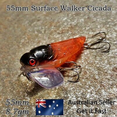 Cicada Topwater Surface Popper Bug Lure Trout, Redfin, Perch, Bass, Bream, 55mm