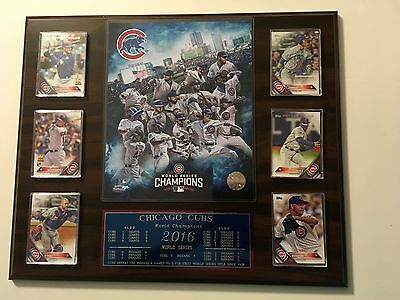 Chicago Cubs 2016 World Series (3)
