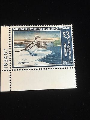 1967 Duck Stamp Rw34 Mint With Plate #
