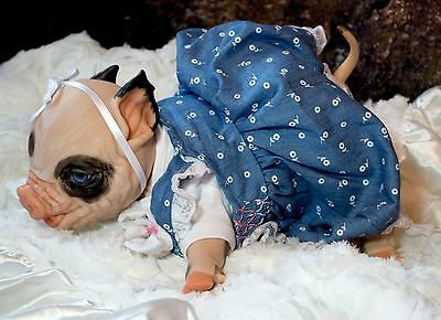 "Reborn Pig ""Fawn"" w/  powder scented, and magnetic paci Boy or Girl"