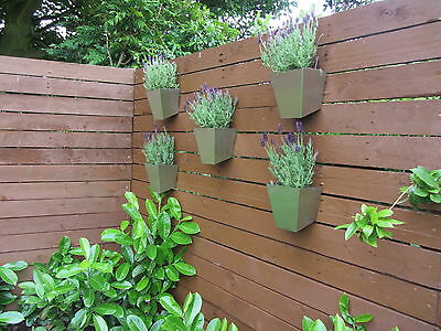 contemporary stainless steel wall planters packs of two