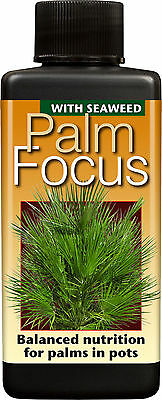 100ml - PALM FOCUS - Nutrients / Food for Palm Trees / Cycads