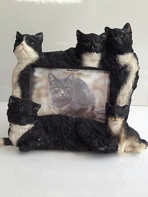 Black & White Cats 4x6 Picture Frame By E&S Imports ~NEW~