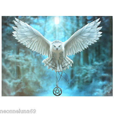 Owl Canvas Wall Art - Plaque - Awake Your Magic - Anne Stokes - Mythical