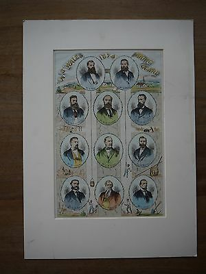 """Rare Advertising Poster """"New South Wales 1874 Mining Board"""" Matted Poster"""