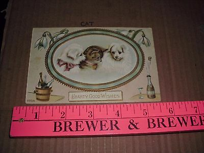 Cat Kitten Baby Hearty Good Wishes Dog Puppy White wine party New Years embossed