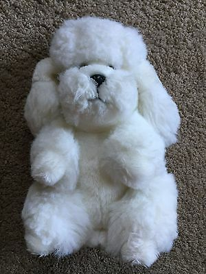 White French Poodle Dog Standing Sit Car Teddy Soft Toy Animal Nature Wildlife
