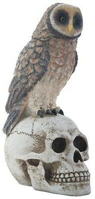Big Brown Owl on Skeleton Skull Halloween Decorative Statue Figurine