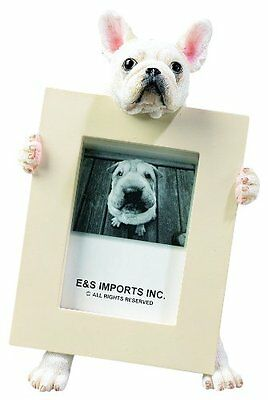French Bulldog White Dog Picture Photo Frame