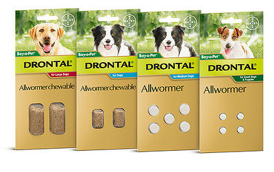 Drontal Allwormer For Dogs All Sizes Worming Tablets for Dogs