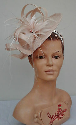 Ladies Whiteley/Maddox,Oyster Fascinator, Wedding/Races/Mother of the Bride