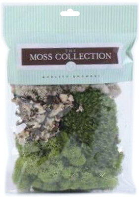 Variety Pack Moss 108.5 Cubic Inches  QG1390