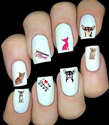 Chihuahua Chien 30 Autocollant Stickers ongles nail art manucure water decal