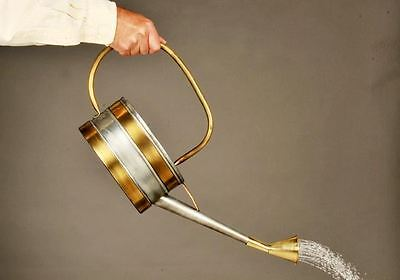 Polished Brass And Steel Long Handle Watering Can