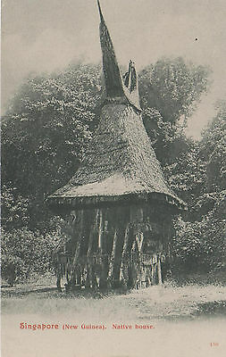Singapore (New Guinea) Native House Unposted 469