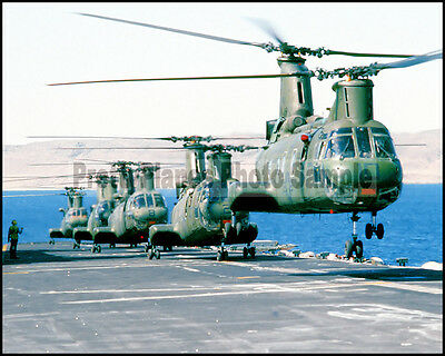 USMC CH-46 Sea Knight USS Saipan 1981 8x10 Photo