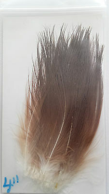 "LOT of 25 Feathers   HERON   ""  Nat. Brown ""  4 inch  SPEY,SALMON,STEELHEAD"