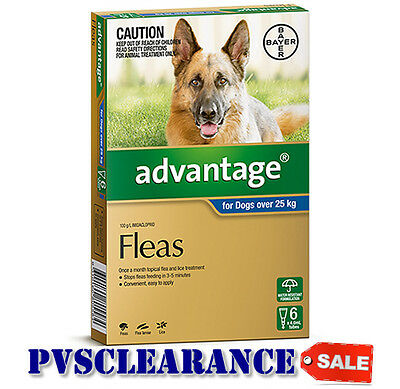 Advantage Blue for Extra Large Dogs Over 25 kg -  6 Pack - CLEARANCE - Dog Fleas