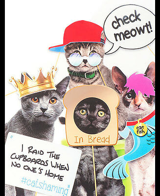 Cat Selfies Photo Prop Kit Cat Shaming Kitty Pictures Funny Quotes Captions Pet