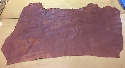 12 Sq Ft Mid Brown Thick Leather Skin/ Hide.