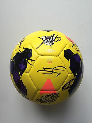 Hull City Fc  2013/14 Squad Signed Football 20 Autographs.