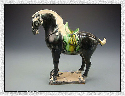 Rare Wonderful Collectible China Tang SanCai Black Glaze Pottery Horse Statue