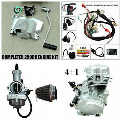 Complete 250cc Zongshen Engine + Mukuni Carby Pod Filter Wiring Harness ATV Quad
