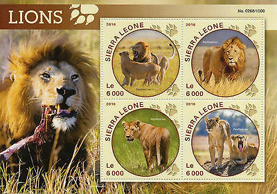 Sierra Leone 2016 MNH Lions 4v M/S Wild Animals Big Cats Lion Stamps