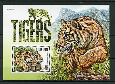 Sierra Leone 2015 MNH Tigers 1v S/S Siberian Tiger Wild Animals Fauna Stamps