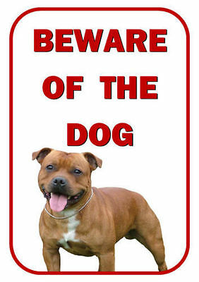 Beware Of The Dog - Brown Staffordshire Bull Terrier - Laminated Sign New