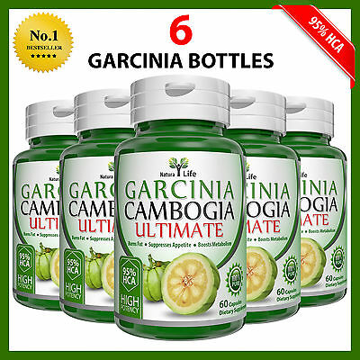 360 Capsules 6 BOTTLES 3000mg Daily GARCINIA CAMBOGIA 95% HCA Diet Weight Loss