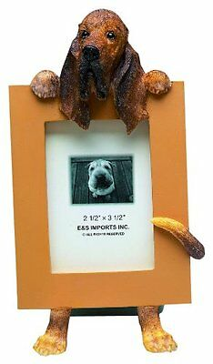 Bloodhound Dog Picture Photo Frame